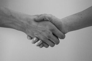 linee guida rapporto pa terzo settore stretta di mano